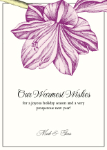 New Years Cards - amaryllis