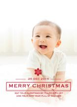 Christmas Cards - christmas snowflake
