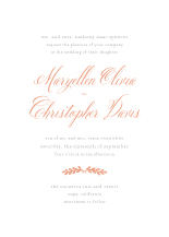 Wedding Invitations - happily ever after