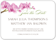 Save the Date Card - artistic orchid