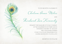 Wedding Invitations - peacock feather
